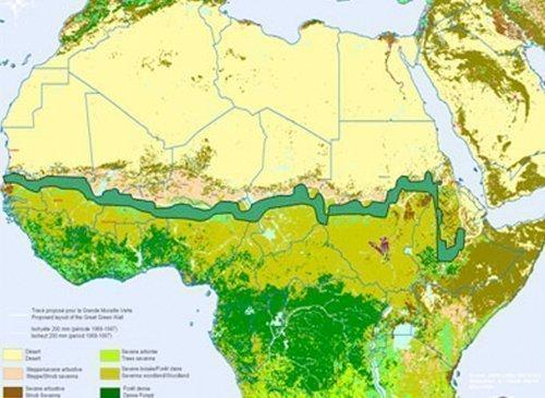 CONSTRUYENDO LA GRAN MURALLA VERDE DE ÁFRICA
