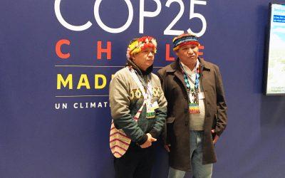 Cómo sobrevivir a la COP25